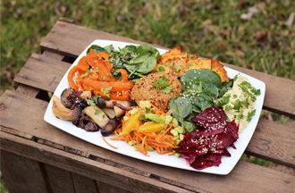 Wie Nahrungsqualität die Leistungsfähigkeit beeinflusst