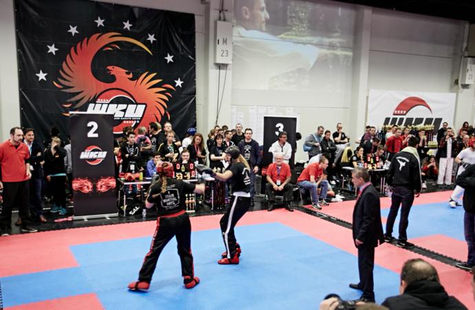 FIBO 2017: Kampfsport für Fitnesstrainer
