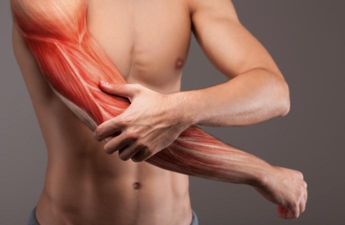 Neue Strategien gegen den Muskelkater