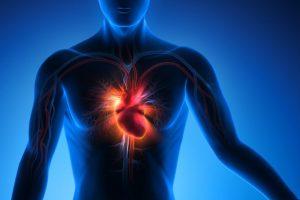 Fitness halbiert Herz-Risiko