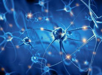 Neuronales Bewegungscoaching